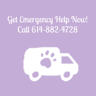 Emergency Vet Columbus Ohio